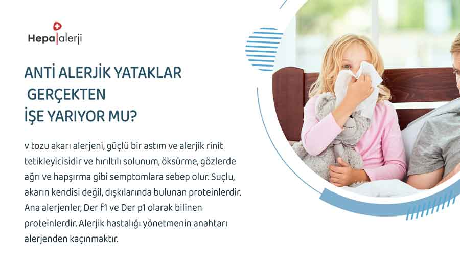 Anti Alerjik Yataklar Gerçekten İşe Yarıyor mu?